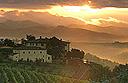 Villa Dievole in Tuscany