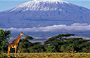 Luxury tourism in Tanzania