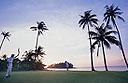 Banyan Tree golf