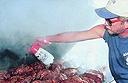 World Barbecue Championship
