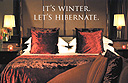 It's winter - let's hibernate!