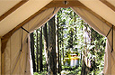 Canvas Cabins - the ultimate outdoor experience