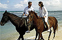 Half Moon equestrian activities
