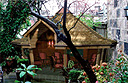 Cigar shack
