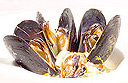 Spiced Mussel and Pineapple Stew