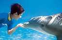 Swimming with dolphins at Discovery Cove