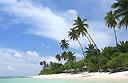 Luxury for passengers of stricken Costa Allegra