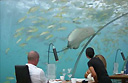 Dining underwater at Ithaa in the Maldives