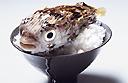 Blowfish at the Four Seasons Hotel Mumbai