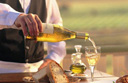 Wine tasting experience as you cruise through Europe