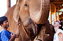 Trek with the elephants at Thailand's Anantara Golden Triangle Resort and Spa
