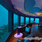 Photograph of the week: the world's first underwater nightclub