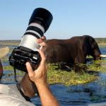 Africa's first permanent photo safari operator