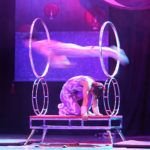 10 great reasons to go and see the Chinese State Circus