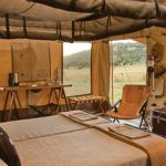 Bid on a 4 night Singita safari for 2 people and experience the vast expanse of the Serengeti plains