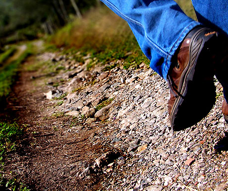 Walking wild or walking high - two very different luxury walking holidays - A Luxury Travel Blog