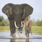 5 once-in-a-lifetime experiences in Botswana