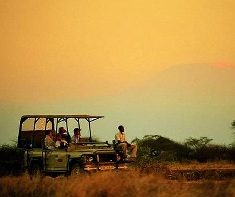 Porini Amboseli game drive
