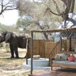 Top 5 safari loos with a view