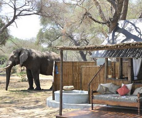 Ol Mondoro Bush Camp, Zambia