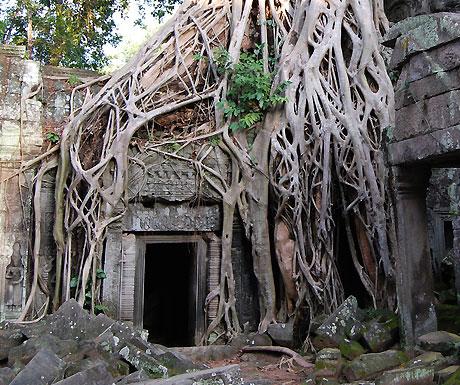 Ta Prahm Temple