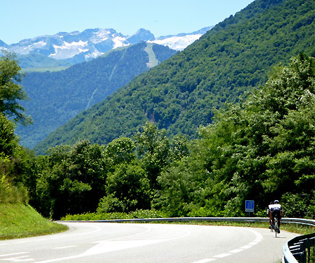 Cycling a stage of the Tour de France