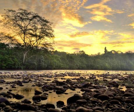 Temburong National Park, Brunei