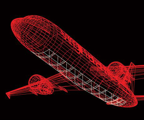 Glass-bottomed plane