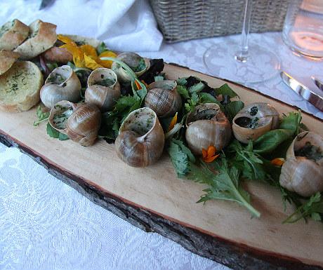 IDW snails