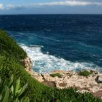 Two October foodie events on Mallorca