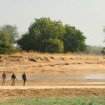Africa's best walking safaris uncovered