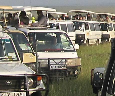 Masai Mara traffic