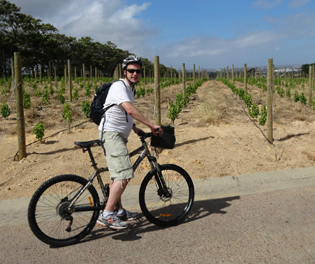 Cyling around the wineries