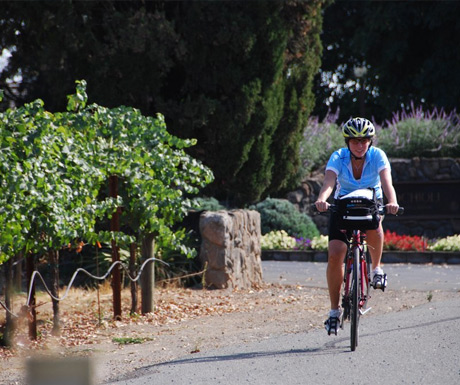 Riding in Napa Valley