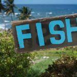 Top 10 dining experiences in Barbados