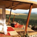 Questions to ask when booking your luxury safari