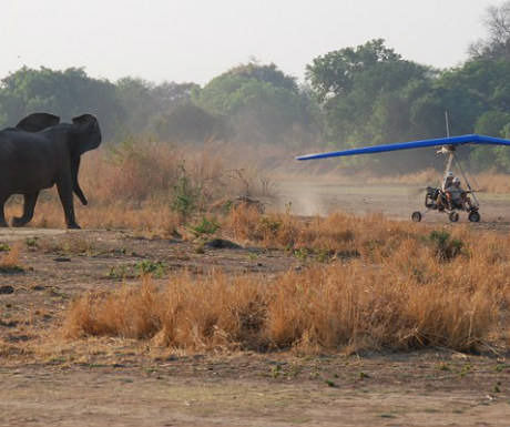 Microlighting in Africa