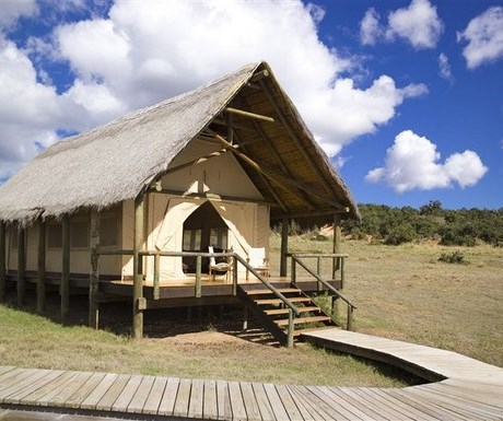 Gorah Elephant Camp - tented suite exterior
