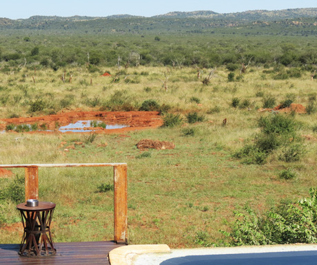 Madikwe scenery