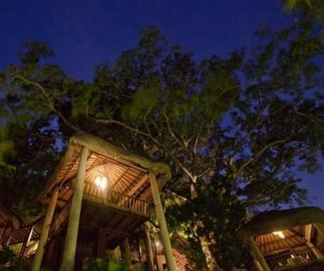 Tree Tops, Koh Samui