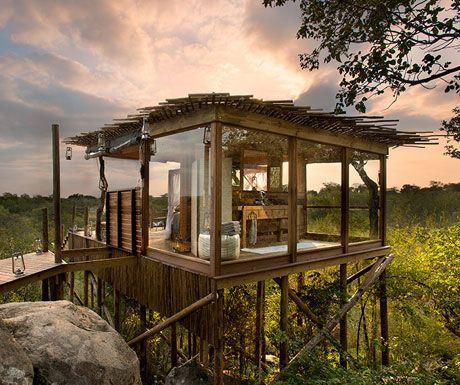 Lion Sands Treehouses