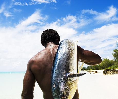 Vamizi Island fish