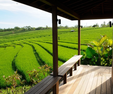 Bulung Daya, Bali luxury villa in rice fields