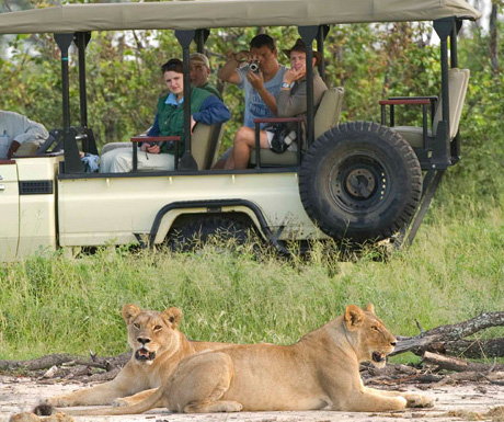 Chitwa Chitwa safari