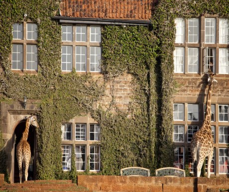 Boutique Hotel #3 : Giraffe Manor