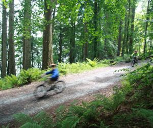 A family mountain biking trip in the Lake District, UK