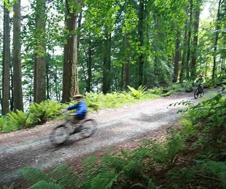 Mountain biking in the Lake District 2