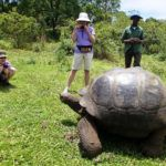 6 unusual animals you'll find on the Galapagos Islands