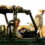Top 5 luxury safari spots to see cheetah