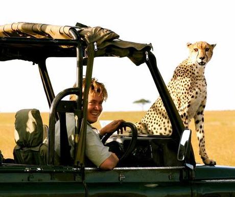Cheetah at Richards Camp